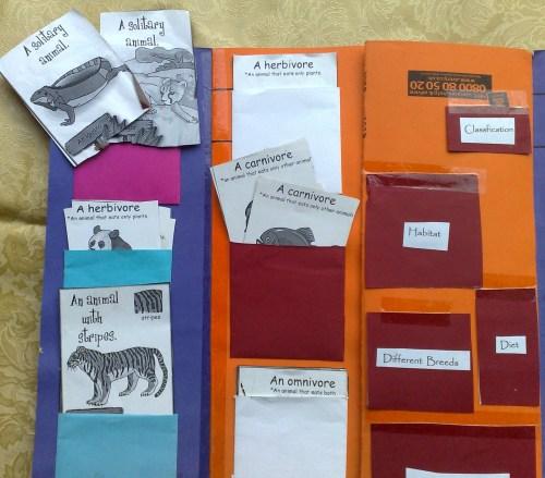 classification pockets