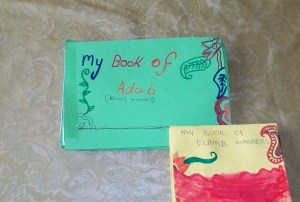 junior mini book covers